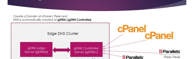 Admin-Ahead gDNS Cluster :: Cluster DNS from cPanel and other Control Panels. picture